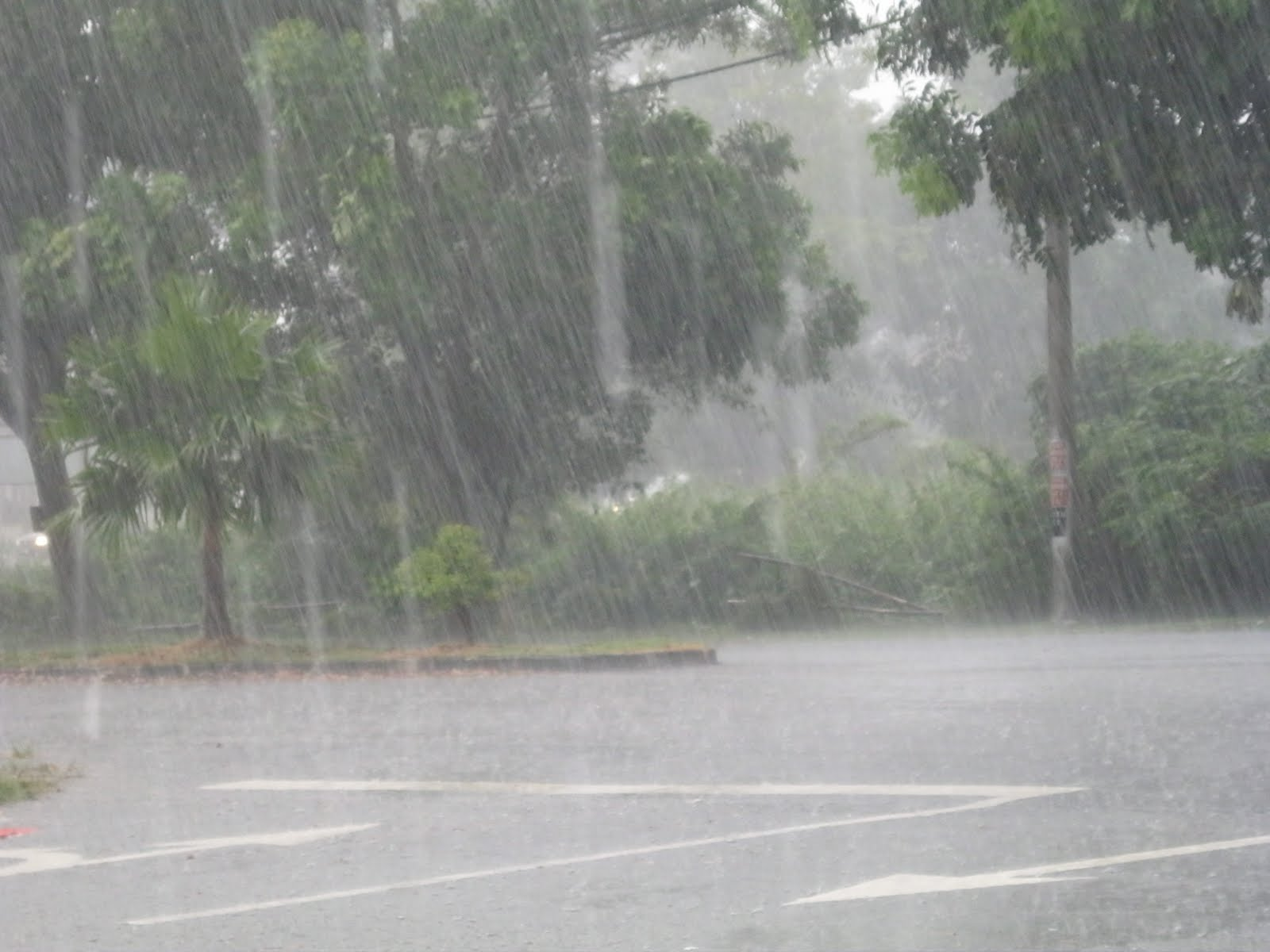 >hujan rindu petang ini…. | Sekamarrindu2009's Blog